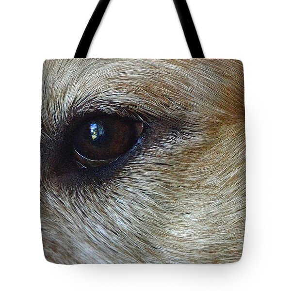 Eye See You Tote Bag by Lisa  Phillips