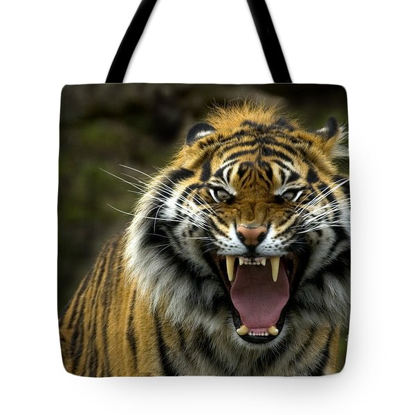 Eyes of the Tiger Tote Bag by Mike  Dawson