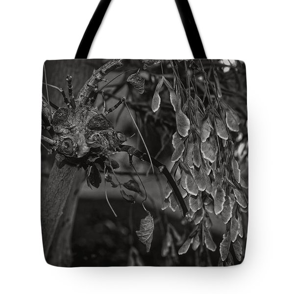Face In The Maple Tree 2 Tote Bag by Leana De Villiers