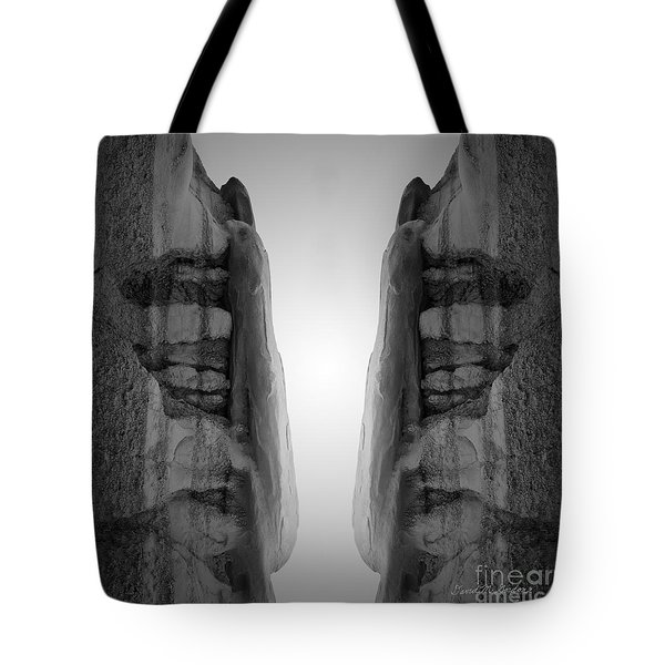 Face To Face Montage I Tote Bag by David Gordon