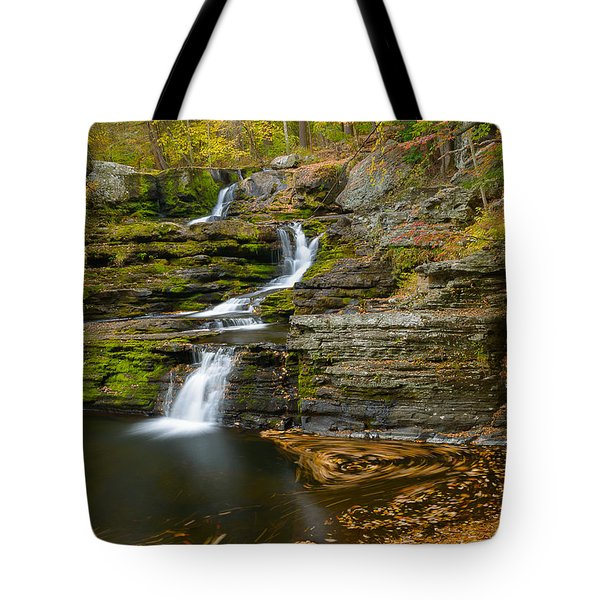 Factory Falls Tote Bag by Mark Robert Rogers