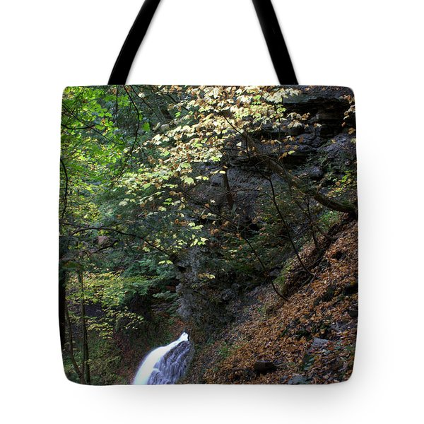 Fairyland Tote Bag by J Allen
