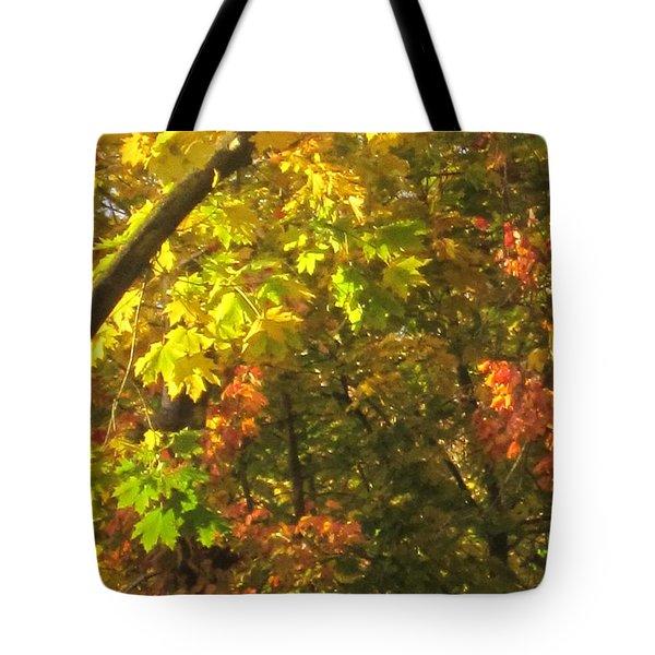 Fall Abstract 2 Tote Bag by Tara  Shalton