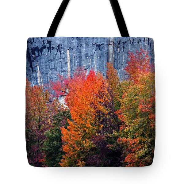 Fall At Steele Creek Tote Bag by Marty Koch