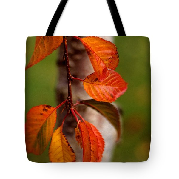 Fall Beauty Tote Bag by Sharon Elliott