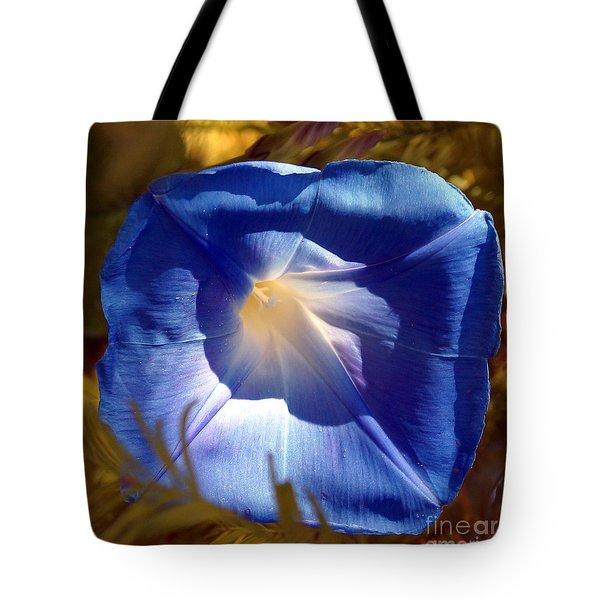 Fall Blues Tote Bag by Kim Pate