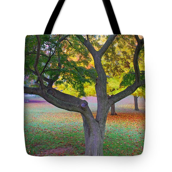 Fall Color Tote Bag by Lisa Phillips