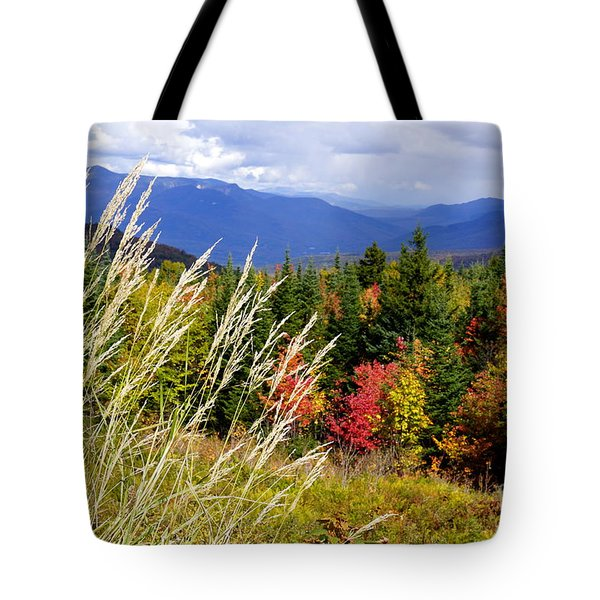Fall Foliage 2 Tote Bag by Kerri Mortenson