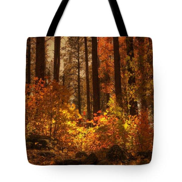 Fall Forest  Tote Bag by Saija  Lehtonen