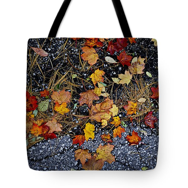 Fall leaves on pavement Tote Bag by Elena Elisseeva