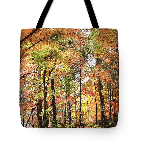 Fall Light Tote Bag by AR Annahita