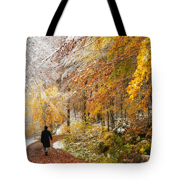 Fall or winter - autumn colors and snow in the forest Tote Bag by Matthias Hauser