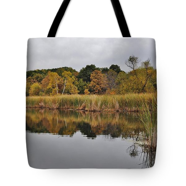 Fall Reflections 2 Tote Bag by Todd and candice Dailey