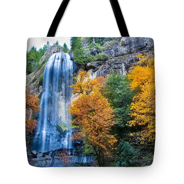 Fall Silver Falls Tote Bag by Robert Bynum