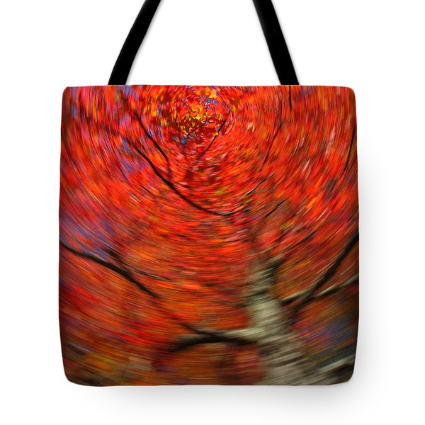 Fall Tree Carousel Tote Bag by Juergen Roth