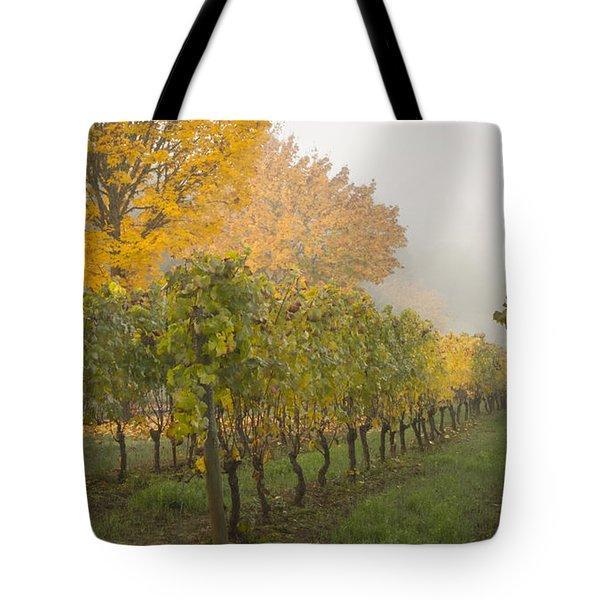 Fall Vineyard Colors Tote Bag by Jean Noren