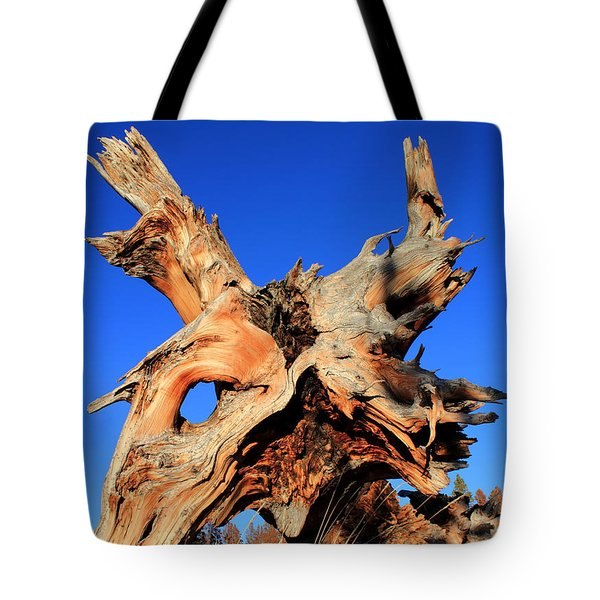 Fallen Tote Bag by Shane Bechler