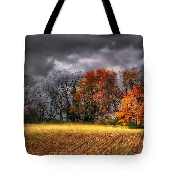 Falling Into Winter Tote Bag by Lois Bryan
