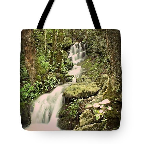 Falls In The Smokies Tote Bag by Marty Koch