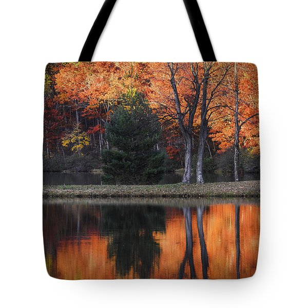 Fall's Natural Fire Tote Bag by Lynn Bauer