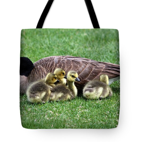 Family Gathering Tote Bag by Dana Bechler