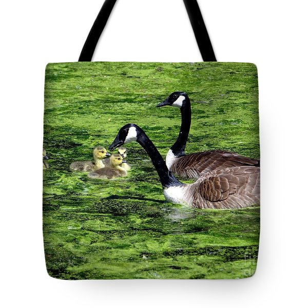 Family Outing Tote Bag by Ed Weidman