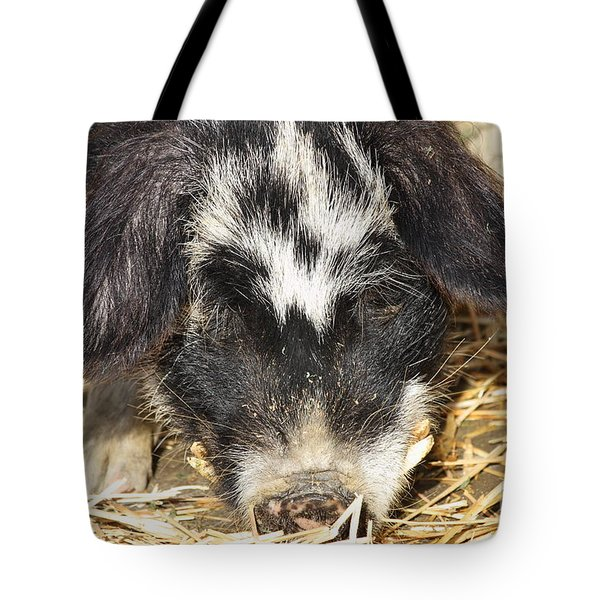 Farm Pig 7D27361 Tote Bag by Wingsdomain Art and Photography