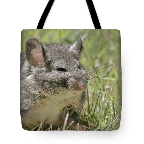 Fat Norway Rat Tote Bag by Christine Till