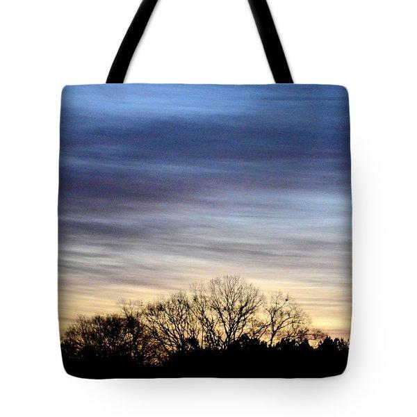 February 1 Dawn 2013 II Tote Bag by Maria Urso