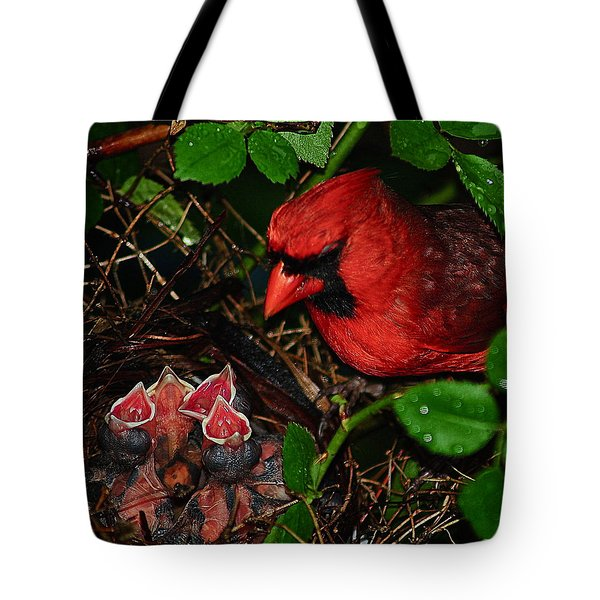 Feed Me Daddy Tote Bag by Frozen in Time Fine Art Photography