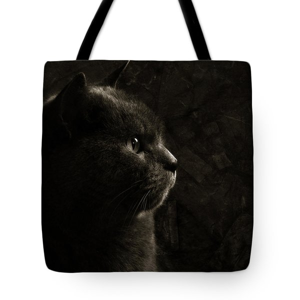Feline Perfection Tote Bag by Laura Melis