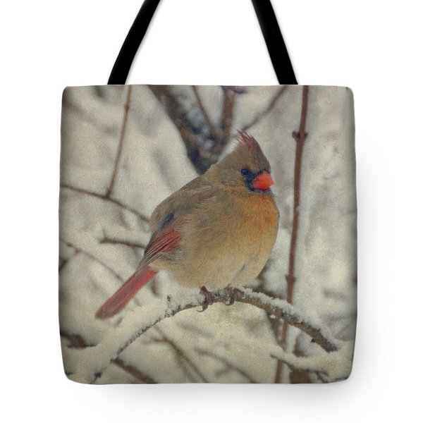 Female Cardinal In The Snow II Tote Bag by Sandy Keeton