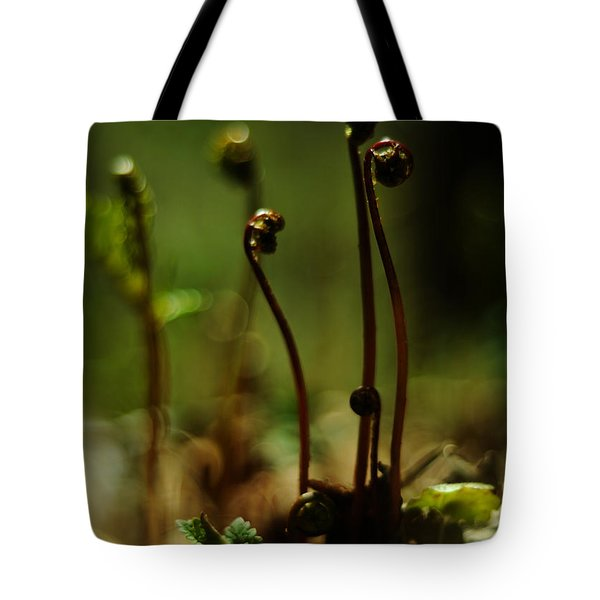 Fern Emergent Tote Bag by Rebecca Sherman