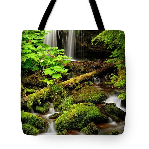 Fern Falls Panoramic Tote Bag by Leland D Howard