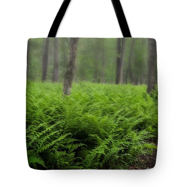 Fern of the Fog Tote Bag by Bill  Wakeley