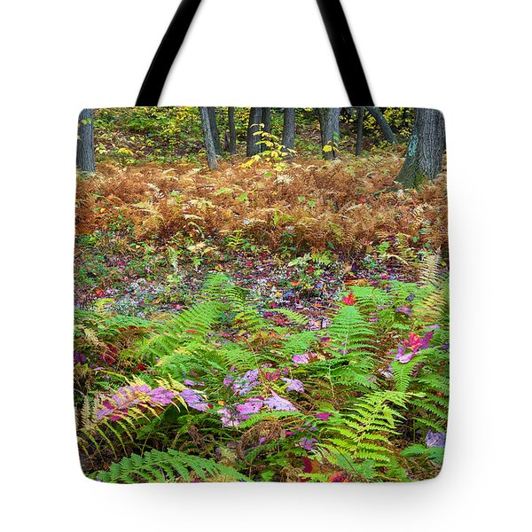 Ferns of Fall Tote Bag by Bill  Wakeley