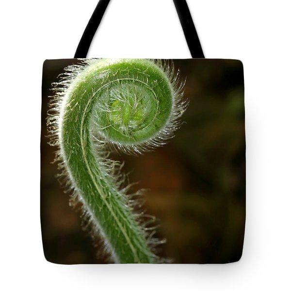 Fiddlehead Fern Curl Tote Bag by Sabrina L Ryan