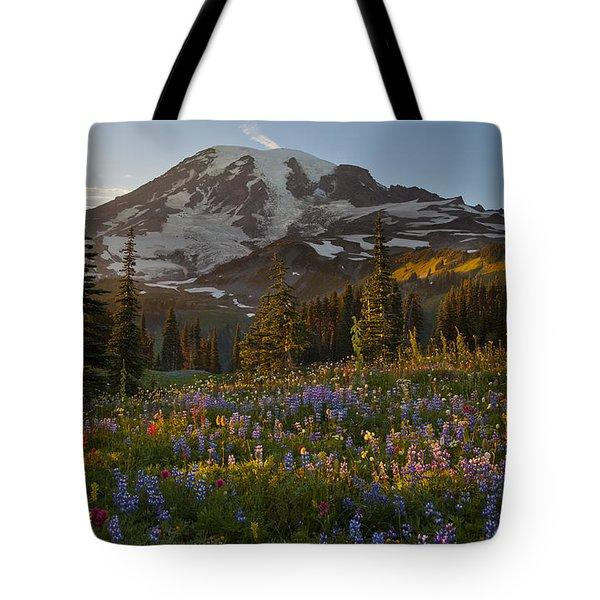 Field Of Dreams Tote Bag by Mike Reid