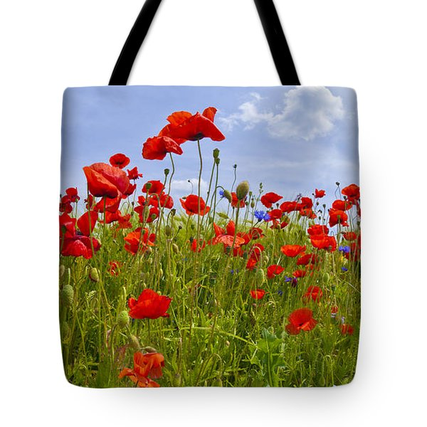 Field Of Red Poppies Tote Bag by Melanie Viola