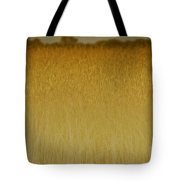 Fields Of Gold Nature Abstract Tote Bag by Anahi DeCanio