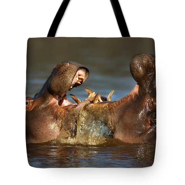 Fighting Hippo's Tote Bag by Johan Swanepoel