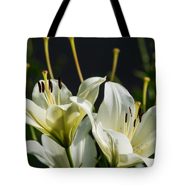 Finishing Blossoming - Featured 3 Tote Bag by Alexander Senin