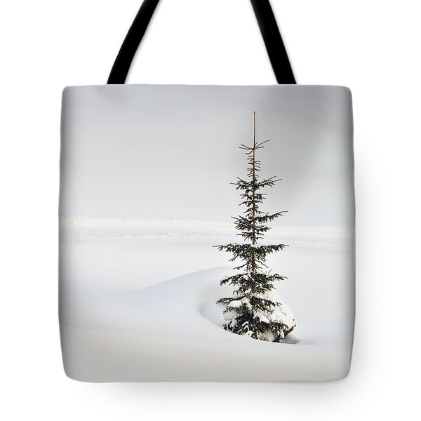Fir Tree And Lots Of Snow In Winter Kleinwalsertal Austria Tote Bag by Matthias Hauser
