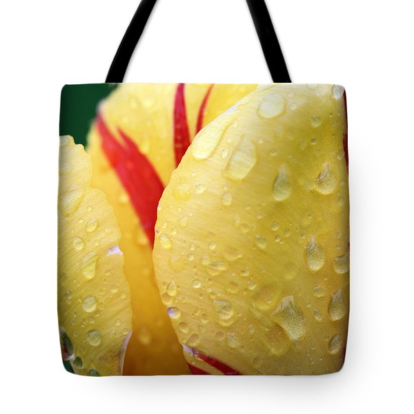 Fire Tote Bag by JC Findley