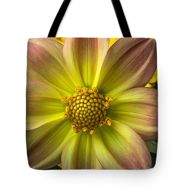 Fireworks Dahlia Tote Bag by Garry Gay