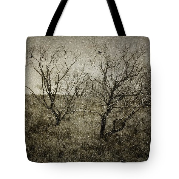 First Snow Tote Bag by Amy Weiss