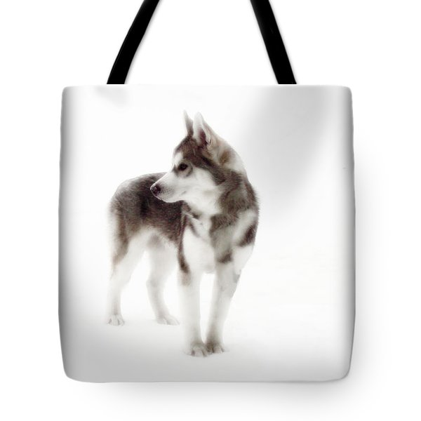 First Winter Tote Bag by Iconic Images Art Gallery David Pucciarelli