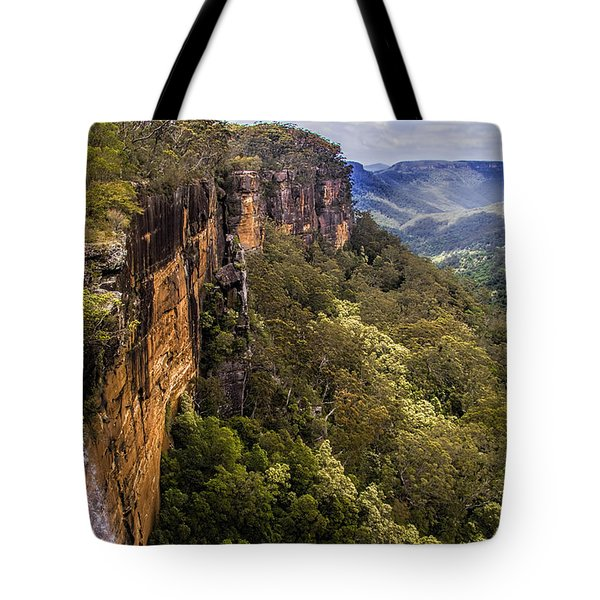 Fitzroy Falls In Kangaroo Valley Australia Tote Bag by David Smith