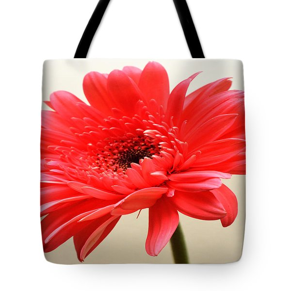Flamingo Zinnia Tote Bag by Sherry Allen