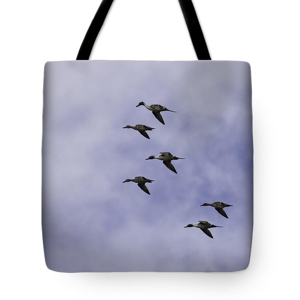Flight Of The Pintails 1 Tote Bag by Thomas Young